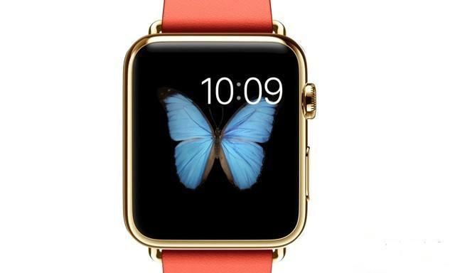 LG Display称霸智能手表显示器面板市场 三星第二